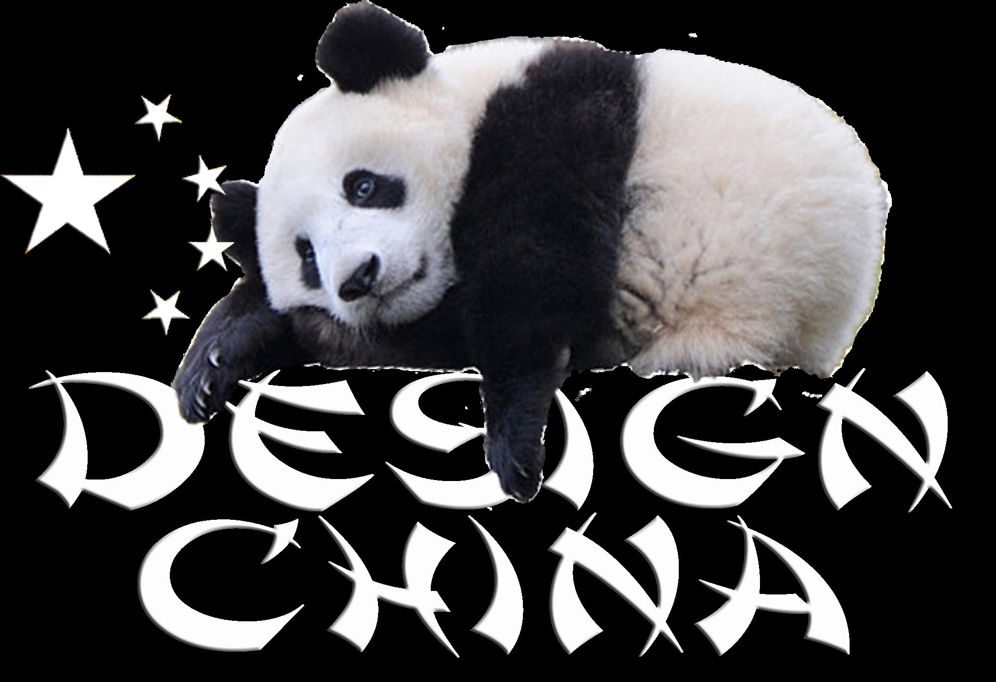 DESIGN CHINA